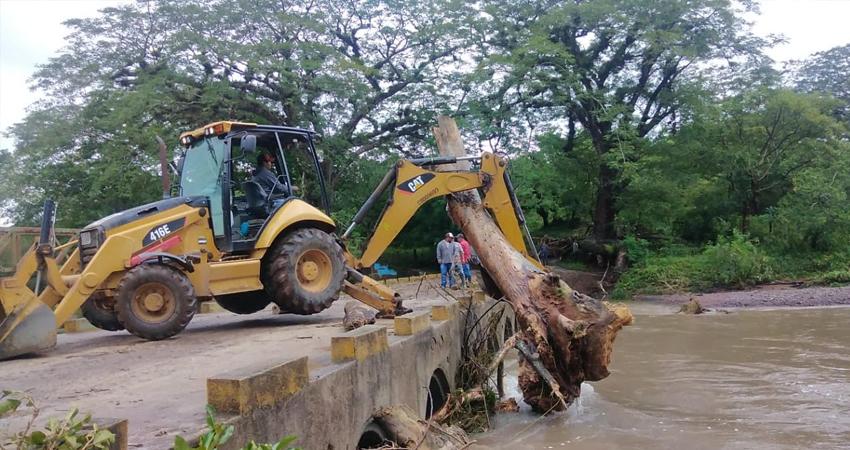 Desprendimiento de árboles por vientos de huracán Iota
