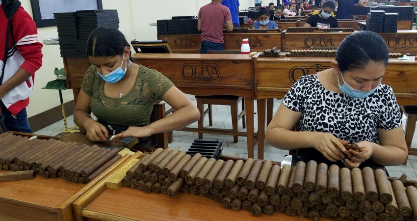 El crecimiento en las exportaciones permitió que varias empresas tabacaleras contrataran más personal