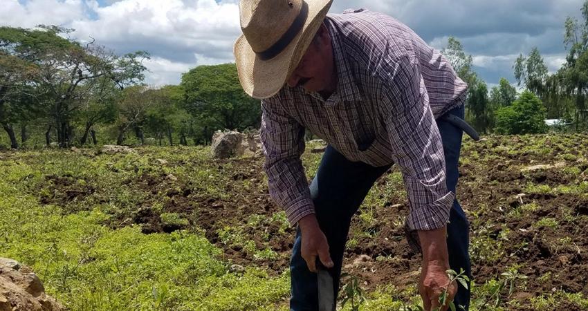 UNAG Estelí apoyará a pequeños productores. Foto: Archivo/Radio ABC Stereo