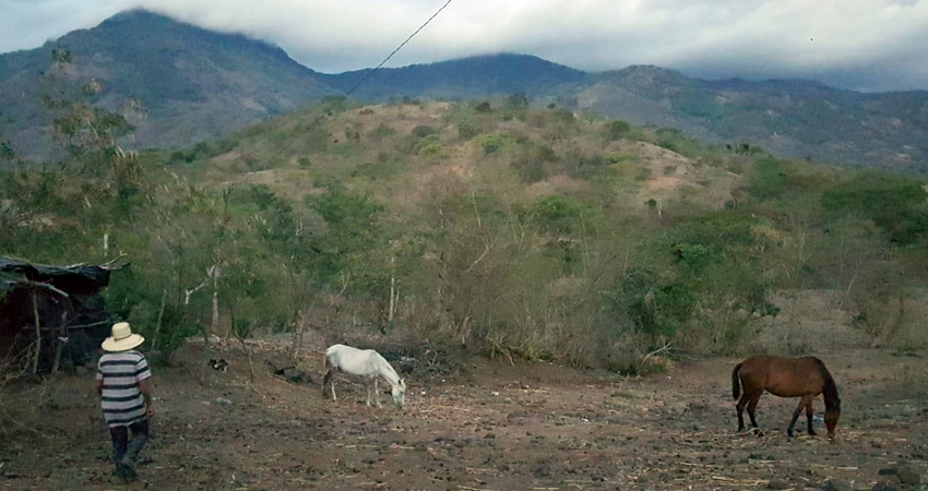 El panorama en algunos comunidades rurales es desalentador ante la falta de lluvia. Varios campesinos están pensando en emigrar, pues temen padecer hambre por el atraso en las cosechas.