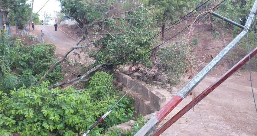 Los árboles cayeron sobre las líneas telefónicas y de televisión por cable al ser derribados por un vendaval acompañado de lluvia en Condega.
