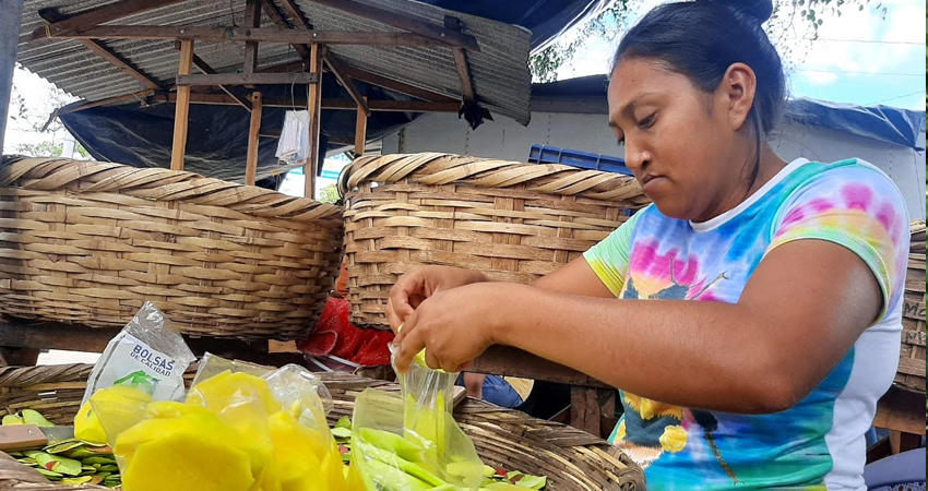 Claudia López se graduó como ingeniera ambiental pero por falta de experiencia no pudo conseguir empleo formal. Decidió dedicarse a la venta de frutas, mientras labora sus dos pequeños hijos la acompañan.