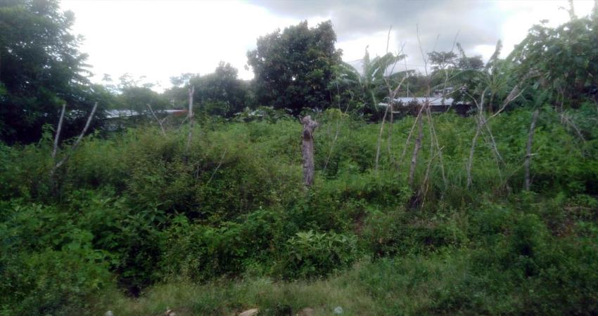 Solares abandonados en Villa Cuba, Estelí. Foto: Alba Nubia Lira/Radio ABC Stereo