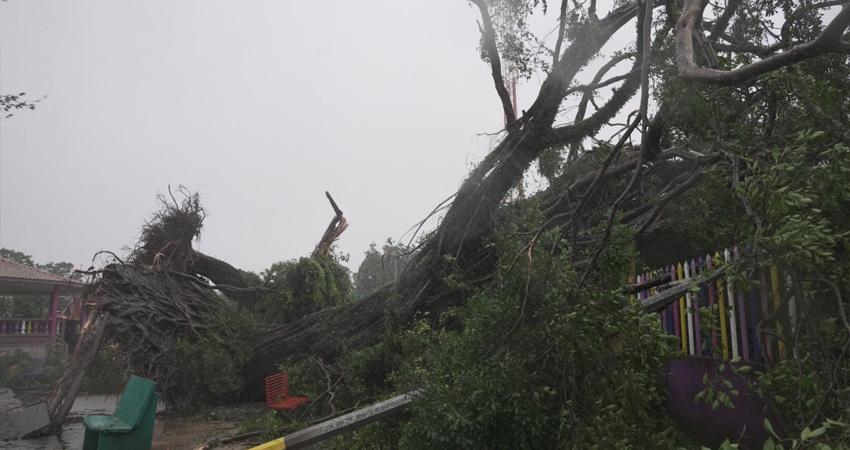 INETER confirmó que en horas de la madrugada de este martes, el centro u ojo del Huracán Eta inició a tocar tierra, al sur de Bilwi, donde los centenares de familias han sido evacuadas.