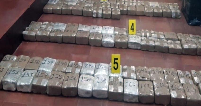 En total son 510 libras de marihuana las que serán incineradas tras la detención de un poblador en la salida sur de Estelí.